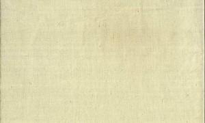 Bomuldsstout-fixeret-2146.0700